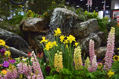 Colorado Garden & Home Show - 2019