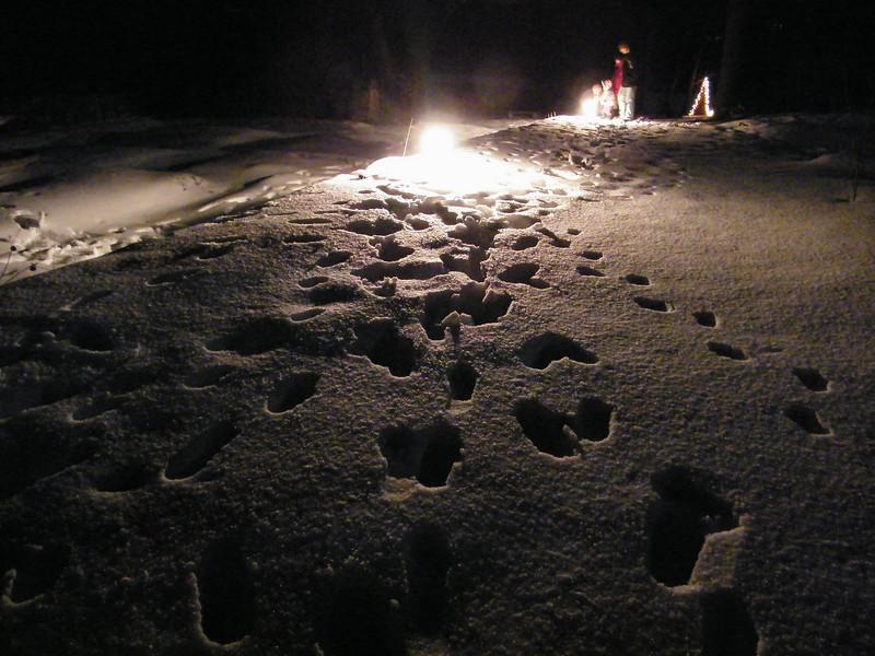 Moonlit Fire, Stonehedge Garden, South Tamaqua, 2-28-2010 (5).JPG