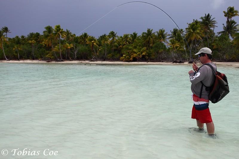 Tahiti (Anaa) (23).JPG