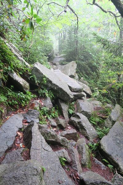 Underwood Trail -- 5,420'