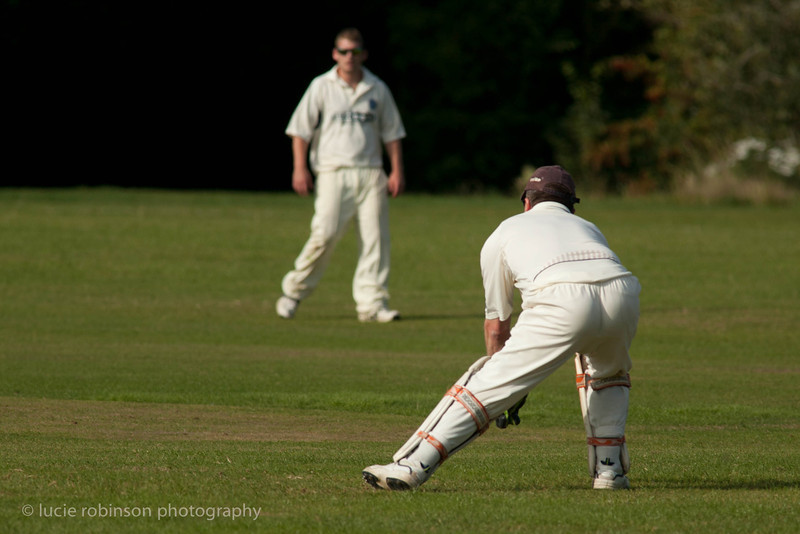 110820 - cricket - 386-2.jpg