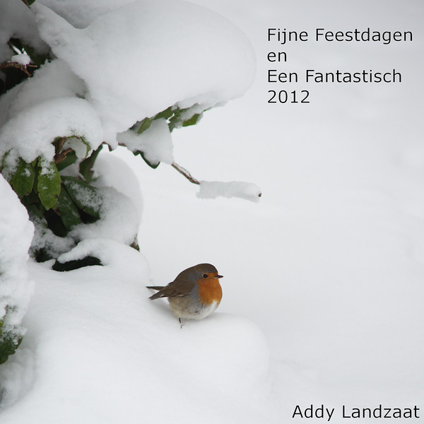 Kerstgroet 2011.jpg
