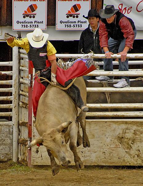 Coombs Bullarama-2008-67A.jpg