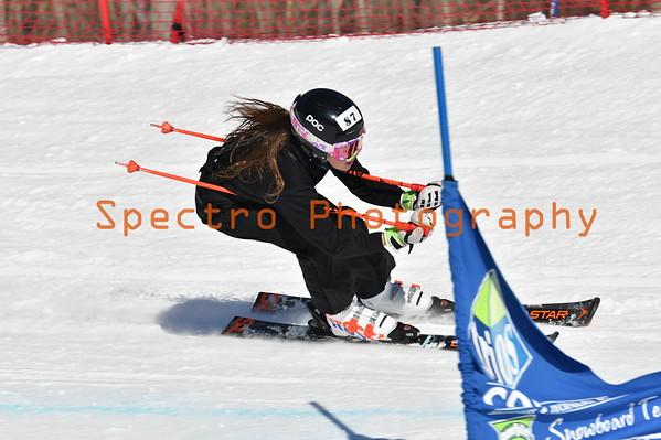 Beaver Valley Skier Cross 2020. 11AM - 12PM