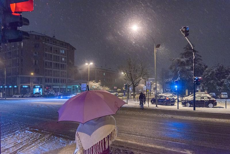 Viale Timavo - Reggio Emilia, Italy - January 30, 2019
