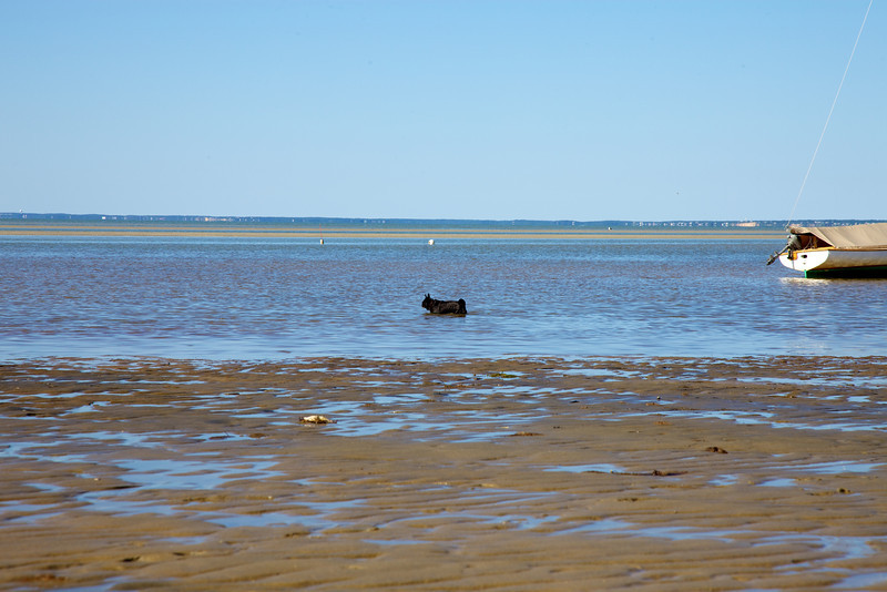 Cape Cod 2011 103.jpg