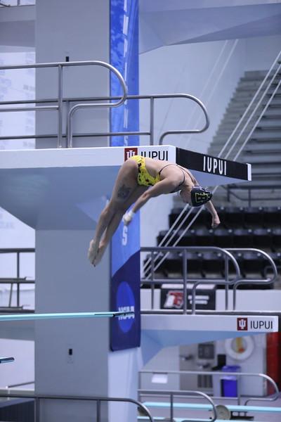 18 03 24 NCAA Diving Div III 3 Meter Nationals