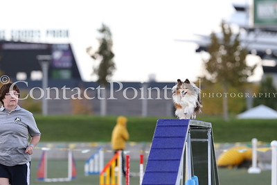 "Cynosport - Performance Grand Prix Semifinal - 8"""