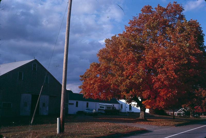 1978 09 Farmhouse.jpg