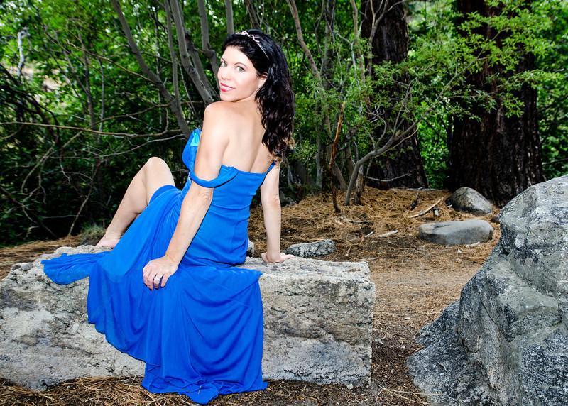 bluedress 3 brushed crop 1.jpg