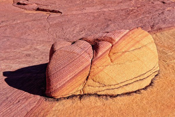 South Coyote Buttes - Cottonwood Cove - 2010