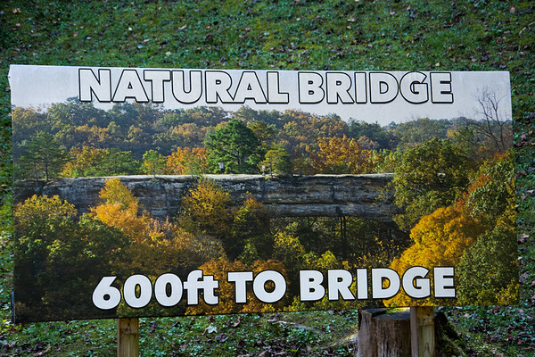 Kentucky Road Trip - The Natural Bridge