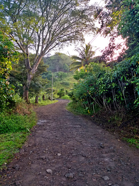 """""""Country Lane"""" at end of Avenida 8"""