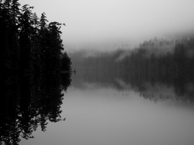 Foggy morning on Vancouver Island