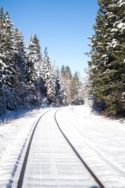 winter 2015-9817.jpg