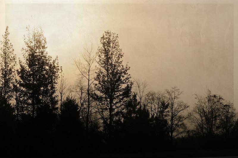 I love the fog.<br /> <br /> Texture by Kim Klassen.
