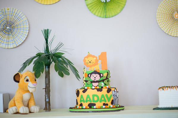 Aavid's First Birthday