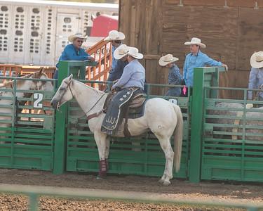 Douglas- Carson Rodeo 29 Aug 2020