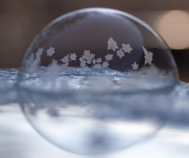 20190130-FrozenBubbles-Set3-1.jpg