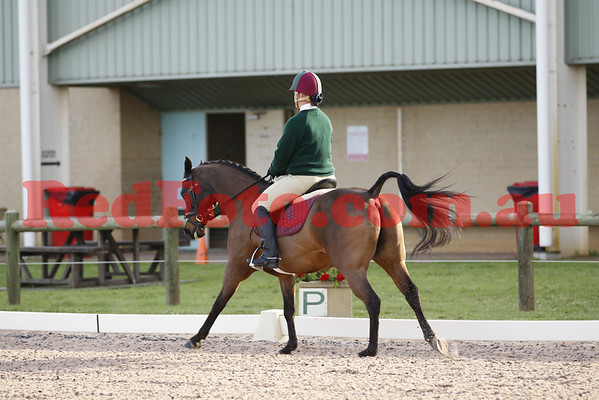 2014 08 24 PCAWA State Dressage Champs Zone Teams Challenge