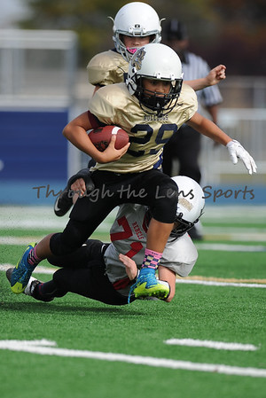 West Albany vs. South Albany Pee Wee