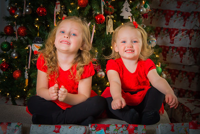 Charlotte and Lexi's Christmas pictures 2016
