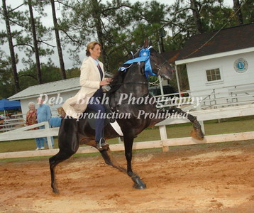 CLASS 3  AMATEUR FOUR YR OLD   SPECIALTY