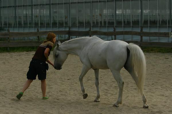 2009_06_27_evelien_paard
