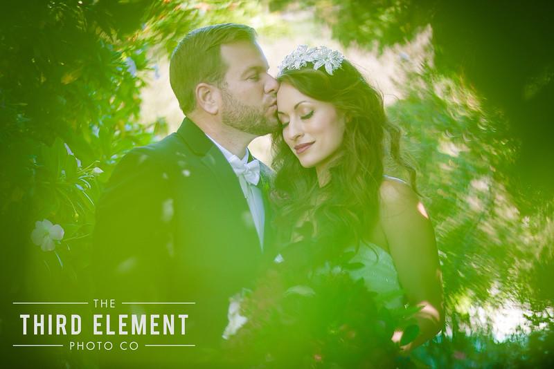 Third Element Photo Co Lina + Rett Carmel Bay Area Wedding Photographer_0030.jpg
