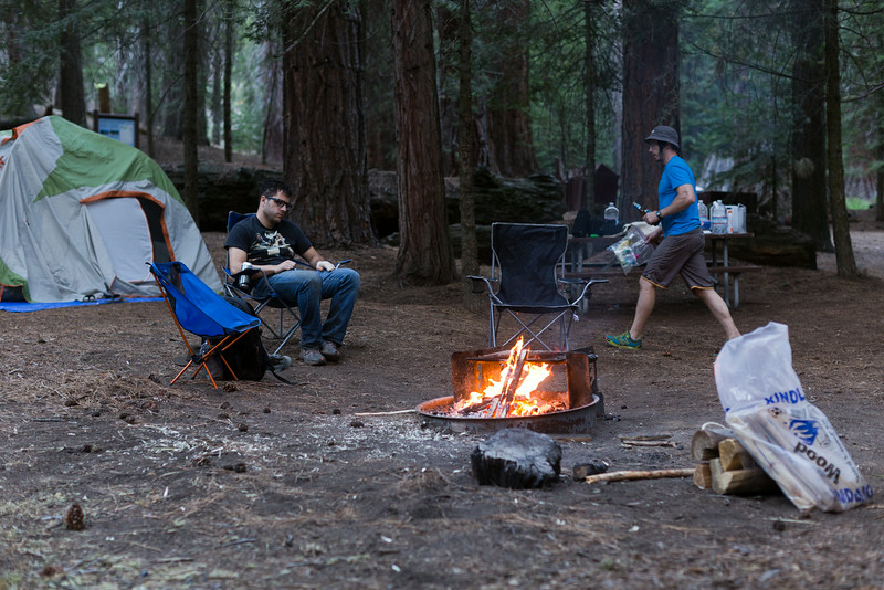 Sequoia_0730.jpg