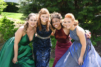 Prom - LHS 2019 - Ellee & Friends