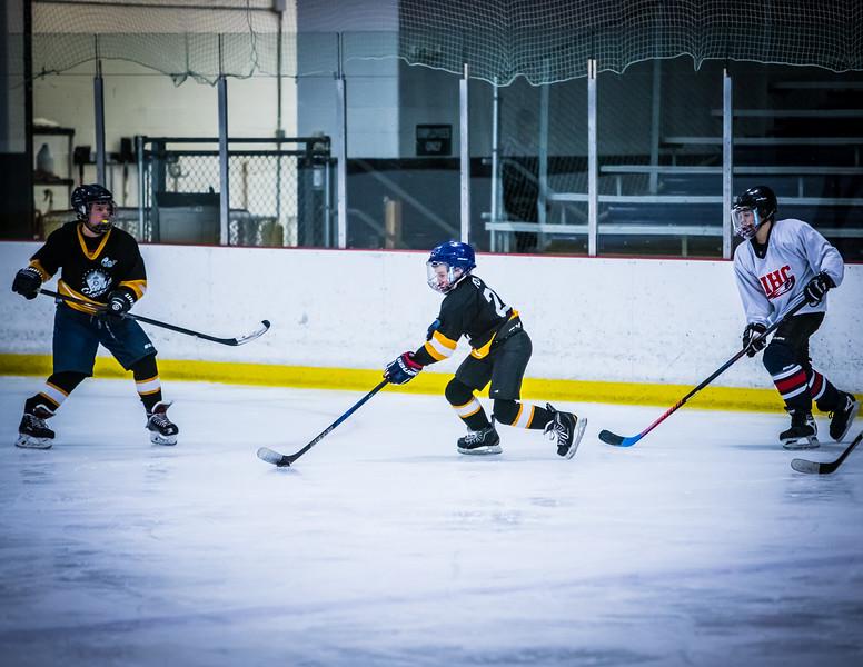 Bruins2-95.jpg