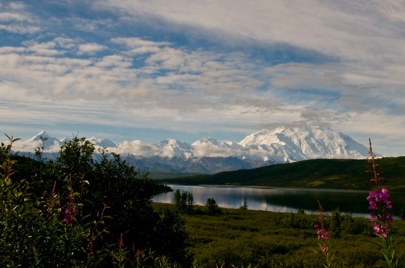 Denali(Mt.jpg