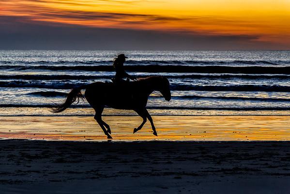 April 26-30, 2017 Horses on the Beach
