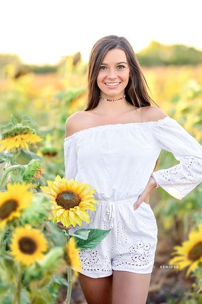 Sunflower 0436.jpg