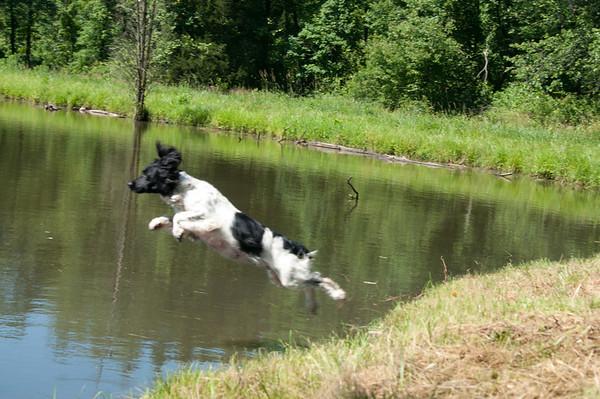 M-AHSC Water Trial June 2012