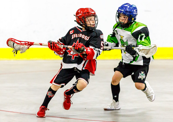 Novice A/B: Halton Hills Bulldogs 1 vs Cornwall Celtics 1