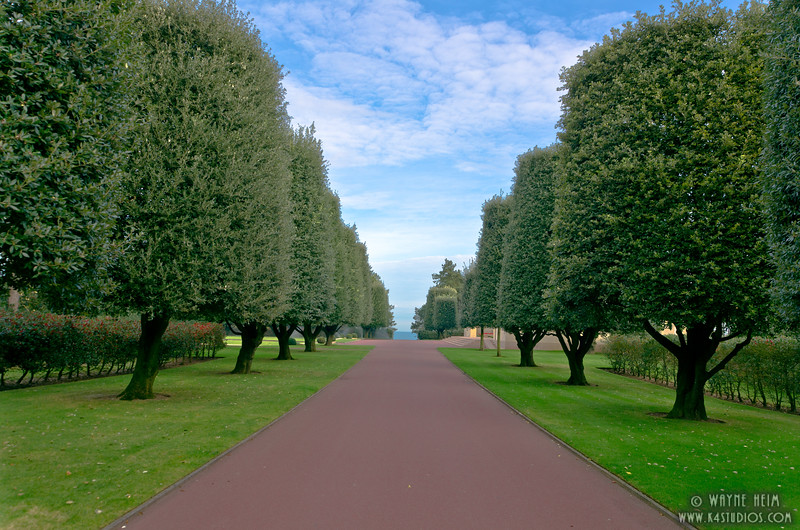 Tree Lined Normandy  Photography by Wayne Heim