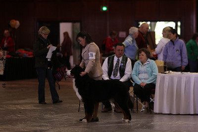 Puppy Dog 12-18 mos-BMDCA 2009