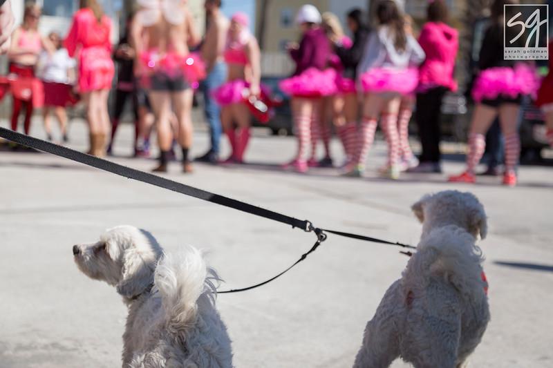 Event-photography-Charleston (7).jpg