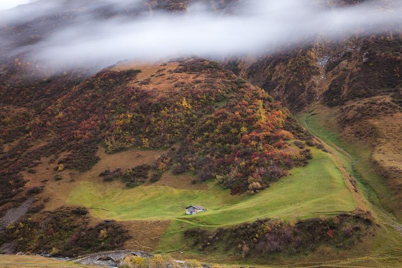 Herbst-im-Rheinwald-D-Aebli-008.jpg