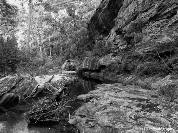 The Wolgan River & surrounds