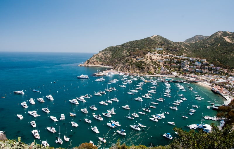 day trips from los angeles - channel islands, santa catalina island