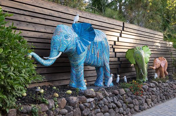 Elephants - krtile.com