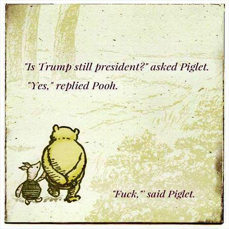 Pooh on Trump.jpg