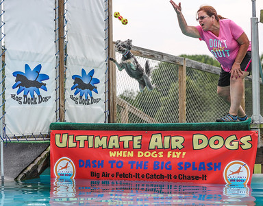 Ultimate Air Dogs Regional  - 30 July