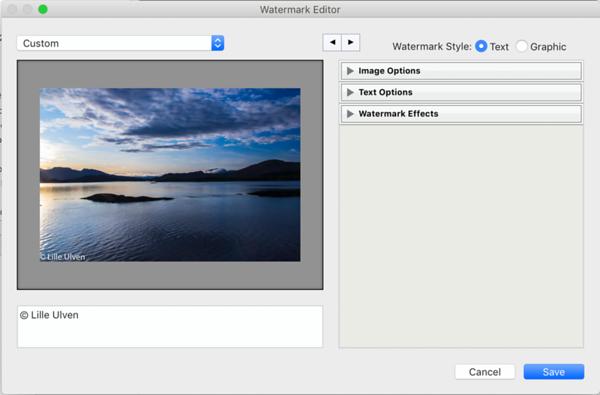 Edit Watermarks Window