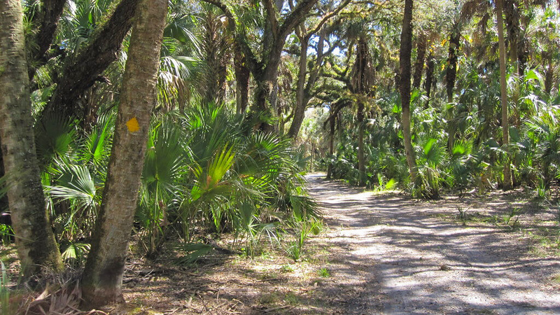 Moccasin Island Trail