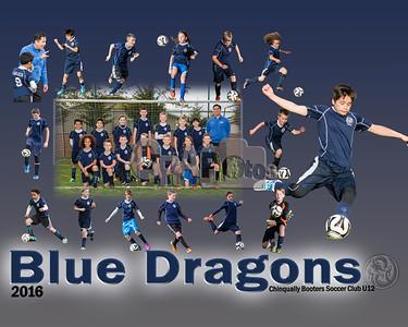 Blue Dragon Team