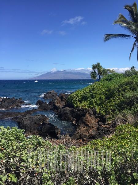 HawaiiPhonePics-373.JPG